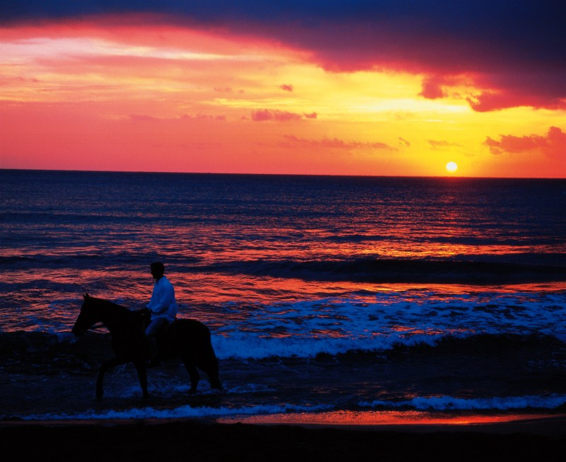 Horseriding at sunset