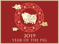 year-of-the-pig-thumb